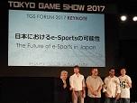 板垣氏連載 東京ゲームショウ2017でみたeSPORTSの可能性