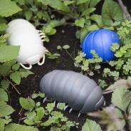 バンダイ、ダンゴムシの構造を徹底研究し丸まる体を再現した世界初のカプセルトイ『だんごむし』を本日より順次発売! 早くも第2弾の発売が決定!