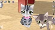 のんき、「mixi」で3D猫育成ゲーム『もふもふにゃんこ』の配信開始 登録者も3日間で1万人突破