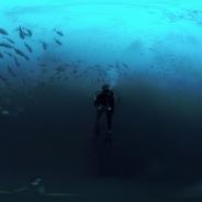 昨日(4月11日)のVRアクセスランキング…Alchemy VRの『Cocos Shark Island』が1位に