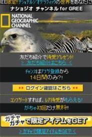 世界最高峰のドキュメンタリーを「GREE」で鑑賞しよう-アドウェイズ、「ナショジオ チャンネル for GREE」の配信開始