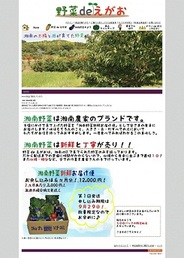 ECナビ湘南ラボ、湘南野菜の直販サイトを開設-藤沢市の学生、地域、農家が協力