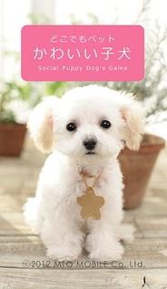 MTOモバイル、位置情報連動型ソーシャルペット育成ゲーム『どこでもペット かわいい子犬』をリリース