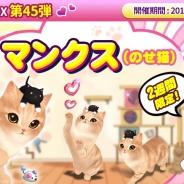 ESTgames、『マイにゃんカフェ』で新種猫「マンクス」が登場する期間限定ガチャ45弾を実施!