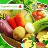 NHN Japan、ソーシャル農園SLG『ハッピーベジフル』で採れたて野菜が当たるキャンペーンを実施