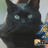コロプラ、『魔法使いと黒猫のウィズ』のTVCMの放映開始…記念キャンペーンも実施