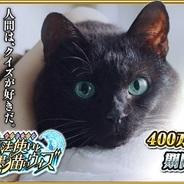 コロプラ、『クイズRPG 魔法使いと黒猫のウィズ』が国内累計400万DL達成! TVCMでDL数が急増