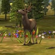 Glu Games、ハンティングアクションゲーム『Deer Hunter 2014』のAndroidアプリ版をリリース