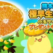 SEモバイル&オンライン、『ハッピーベジフル』で「くまもと風土」提供の熊本県産「極早生みかん 2kg」プレゼントキャンペーンを開催