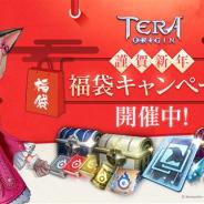 Netmarble、『TERA ORIGIN(テラオリジン)』で新年を祝う福袋キャンペーンを開催 高難易度ギルドボスやイベントダンジョンも追加