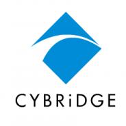 サイブリッジグループ、中国の「大连唯展科技发展有限公司」と国内「ビザイナ」を子会社化…IoTデバイス開発やVR事業へ参入