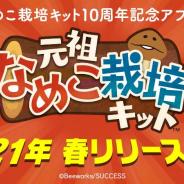 ビーワークス、『元祖なめこ栽培キット』を今春リリース! なめこ栽培キット10周年記念アプリ