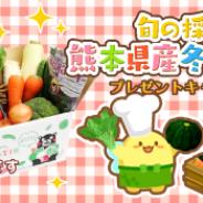 SEモバイル&オンライン、『ハッピーベジフル』で「九州野菜王国」提供の「熊本県産冬野菜」プレゼントキャンペーンを実施