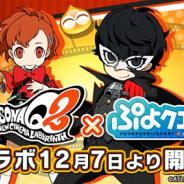 セガゲームス、『ぷよぷよ!!クエスト』でペルソナシリーズ最新作『ペルソナQ2』とのコラボを12月7日より開催 3日の公式生放送でコラボ情報を紹介