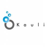 VOYAGE GROUP、SSP「Kauli」を運営するKauliを子会社化 国内SSP市場で売上シェアの圧倒的ナンバーワンを目指す!