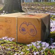 Nianticとポケモン、『ポケモンGO』で4月のイベントを一挙公開! 「シャドウサンダー」を従えるサカキ、ランドロスがレイドに登場