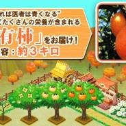 サクセスとエルディ、『畑っぴ~里山くらし~』で南アルプス市の特産富有柿を抽選でプレゼント