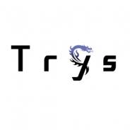 Trysが減資 資本金を1億9700万円減らす 今年5月にExysとトライフォートが合併