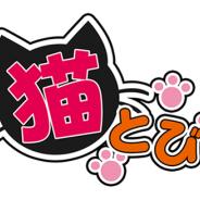 グッディアとリイカ、カジュアルゲーム『猫とび』を共同開発…今後もコラボアプリを大量リリースする「Goodia×liicaコラボシリーズ」第一弾