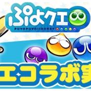 セガゲームス、スマホカメラRPG『パシャ★モン』で『ぷよぷよ!!クエスト』コラボを開催 ぷよぷよグッズが抽選で当たるRTキャンペーンも開始