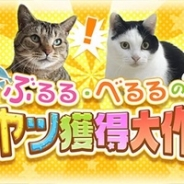 360Channel、『ぶるる・べるるのオヤツ獲得大作戦』を公開 2匹のネコがオヤツ欲しさに呼び鈴やギターを一生懸命に鳴らす