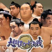 HINATA、『大相撲カード決戦』のサービスを2020年12月25日をもって終了