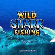パスカル、スリル満点のサメ釣りが体験できる釣りゲームアプリ『ワイルドシャーク フィッシング』をリリース