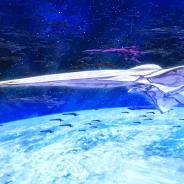 アクアマリン、「銀河英雄伝説 Die Neue These」よりHCK-03銀河帝国戦艦「ブリュンヒルト」プラスチックキットを10月発売!