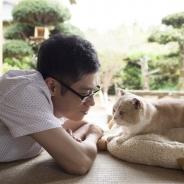 AMGエンタテインメント、累計1900万DLのゲームアプリ『ねこあつめ』が2017年に実写映画化決定! 主演を務める伊藤淳史さんのコメントを公開