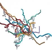 バンダイ、高低差まで再現した地下鉄立体路線図『東京地下鉄立体路線図 東京メトロ編』をガシャポンで発売開始