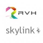 RVH、簡易株式交換でスカイリンクを完全子会社化へ…ゲームアプリ市場参入とともにグループのWebサービスの拡充へ 株価は朝からS高買い気配に