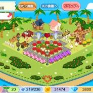 アスキス、農園ゲームに婚活シミュレーションを加えた新作アプリ『農園婚活』を発表 サービス開始は2015年1月下旬の予定