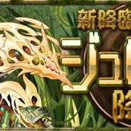 ガンホー、『パズドラ』で新たな降臨ダンジョン「ジュロンド 降臨!」を11月30日12時より開催!