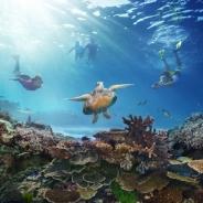 オーストラリア政府観光局「絶景大陸 オーストラリア」キャンペーンを開始 VRヘッドセット使ったプロモーションも