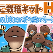 ビーワークス、『なめこ栽培キット HD』と『なめこ栽培キットSeasons HD』でTwitter連動キャンペーンを実施 Amazonギフト券やリアルなめこ栽培キットが当たる!