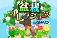 ぼんさい、「モバゲー」で『盆栽コレクション by GMO』の配信開始