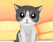 のんき、次世代ネコ育成ゲーム「もふもふにゃんこ」のアルファテスト開始