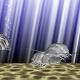 コアメディア、水族館アプリ『アクアランド+』をリリース…ダイオウグソクムシやダイオウイカが育成できる