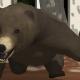 ミルク、スマホ向け育成ゲーム『くまといっしょ - 恐怖のクマ育成ゲーム』を配信開始 野生のヒグマと仲良くなって感動のエンディングを迎えよう