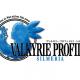 スクエニ、『スターオーシャン:アナムネシス』で『ヴァルキリープロファイル2-シルメリア-』コラボを開催決定!