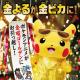 TVアニメ「ポケットモンスター」が10月9日から毎週金曜よる6時55分に引越し!