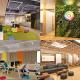 アカツキ福岡が事業拡大に対応し8月5日に本社移転 ビル1棟を「わが家のように、みんなで共創し・育てるオフィス」に