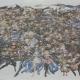 『グランブルーファンタジー』が祝4周年!…3月10日には特別記念広告号外を配布 大迫力のキャラ集合イラストや1年間の軌跡など紙面を写真でお届け