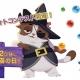 King、『バブルウィッチ3』のボス猫「ウィルバー」のプロモ企画として猫のフォトコンテストを公式SNS上で開催!