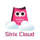ソフトギア、オンラインゲーム開発向けサーバソリューション「Strix Cloud」…簡易なゲームサーバ構築と大量メッセージの高速処理を両立するクラウドサービス