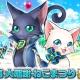 コロプラ、『白猫プロジェクト』と『黒猫のウィズ』でアプリ相互コラボ企画「白猫×黒猫 大感謝ねこまつり」を開催。『白猫』の世界にウィズが登場