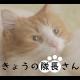 スクエニ、『スクールガールストライカーズ』のWEB動画 「きょうの隊長さん」第2弾を公開