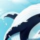 FLERO GamesとIDLE Idea Factory、極地方の魚や鳥、動物たちを収集する癒し系コレクションゲーム『アビスリウムポール』を配信開始!