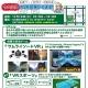 アートテクニカル、開発中のVRゲーム『サムライソードVR』と『VRスポーツ(仮)』が体験できるイベントを11月19日に名古屋で開催