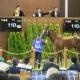 ドワンゴ、「リアルダービースタリオン」で即戦力の競走馬として2歳馬の「オリミツキネン」を購入…年内のレースデビューを目指す
